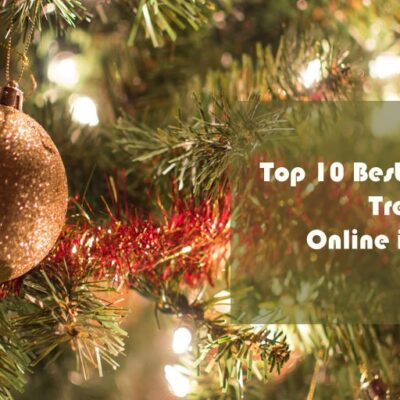 Here You Can Buy Christmas Tree Online India