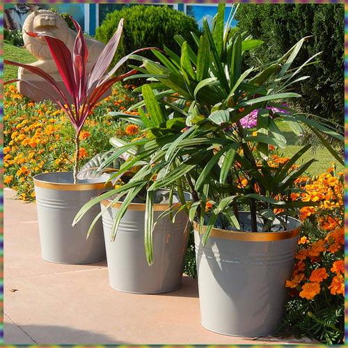 Use Bright Colour Pots for Corridors, Holi Decoration Ideas for School 2021