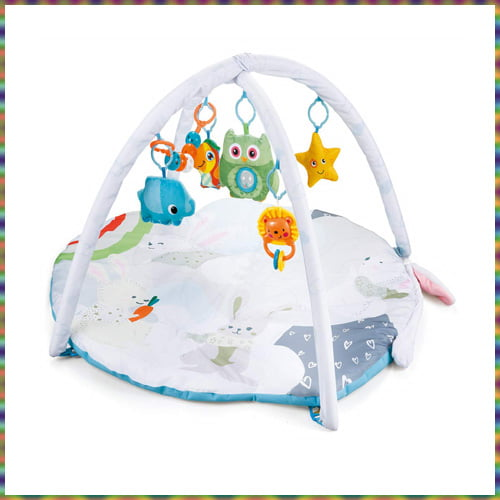 R for Rabbit First Play Rabbit Face Play Gym